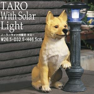 ソーラーライト付柴犬(タロー) 幅26.5×奥行27.5×高さ46.5cm[玄関][ガーデニング][ライト][照明][屋外][犬][太陽光][NK-131][ガーデンライト][LED][ランタン][アンティーク][エコ][エントランス] - 拡大画像