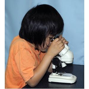 小型実体顕微鏡 こけんびー 傾斜鏡筒タイプ