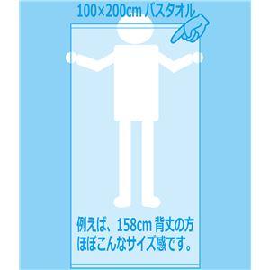 業務用レピア織超大判バスタオル 2000匁 100×200cm レピア白【12枚セット】