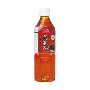 Kprice オリジナル おいしい烏龍茶(箱売) 1箱(500ml×24本)