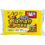 (業務用セット) ぽかぽか家族 貼るタイプ レギュラー 1袋10枚 【×20セット】