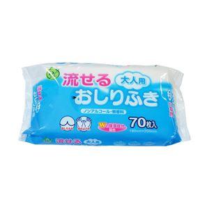 (業務用セット)大一紙工介護用ウエット流せる大人用おしりふき70枚【×10セット】