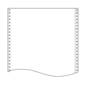 トッパン・フォームズ ストックフォーム 10×11インチ 1010L1 1箱(2000セット)