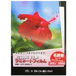 (まとめ)ラミーコーポレーション ラミネートフィルム 名刺サイズ100枚 26011【×20セット】