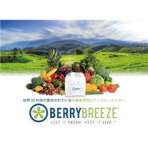 冷蔵庫専用空気清浄機 BerryBreeze BB001