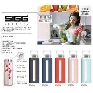 SIGG 耐熱硬質ガラス製ボトル ドリーム(グレーシャ 0.65L)