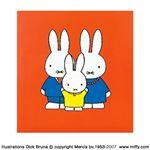 (業務用セット) ディック・ブルーナ ミッフィー フエルアルバム 写真 ア-SA-121-1レッド【×5セット】