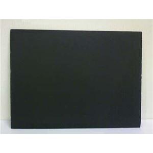 (業務用セット) プラチナ万年筆 プレパネ APA1-2700 黒 1枚入 【×2セット】