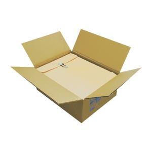 (業務用セット) クラウンクラフトパッカー 50枚入 CR-HBA450 【×2セット】