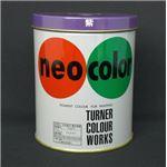【訳あり・在庫処分】(業務用セット) ターナー ネオカラー 600ml缶入・専門家用 B色 紫 【×2セット】