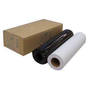 (業務用セット) アジア原紙 大判インクジェット用紙 IJPR-4250R 2本入 【×2セット】 h01