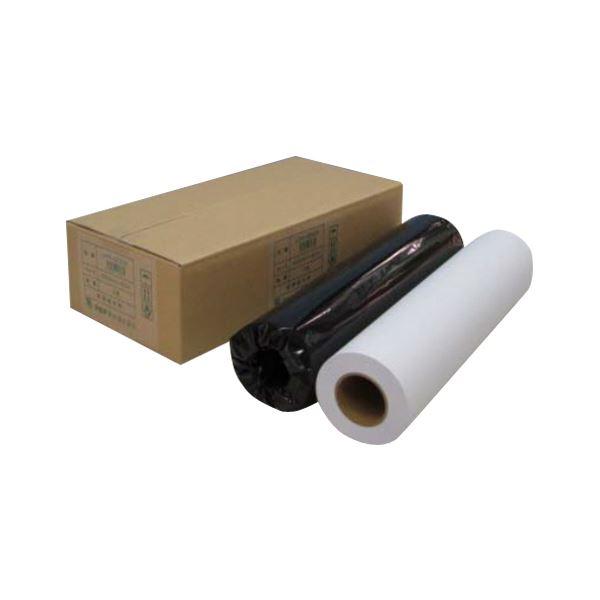(業務用セット) アジア原紙 大判インクジェット用紙 IJPR-4250R 2本入 【×2セット】f00