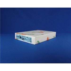 (業務用セット) 北越紀州 NEWファインカラー B5判 NEW ファインカラー B5 スカイブルー 500枚入 【×3セット】 h01
