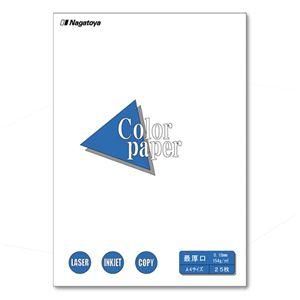 (業務用セット) Nagatoya カラーペーパー A4判 最厚口 ナ-3501 白 25枚入 【×5セット】 h01