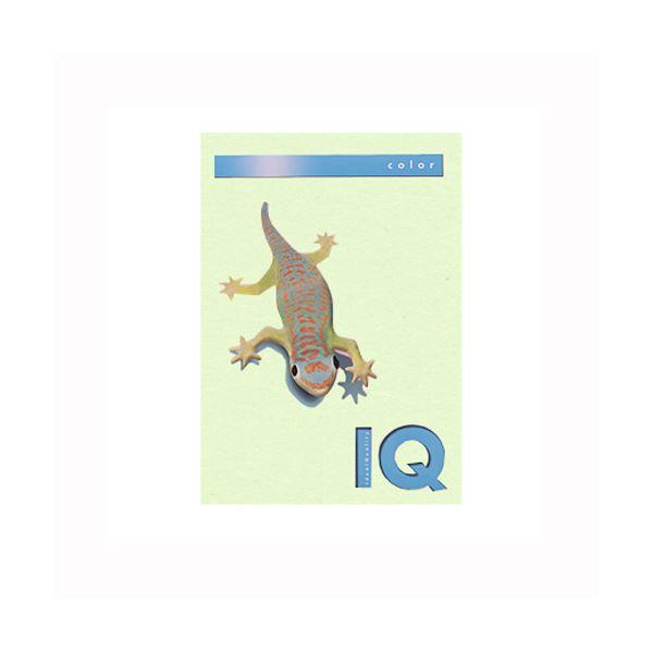 (業務用セット) 伊東屋 バイオトップカラー A4判 500枚入 80g/m2 BT505 グリーン 【×2セット】f00