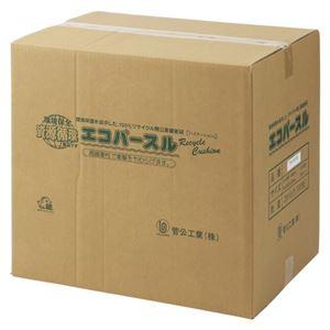 菅公工業 エコパースル A4 100枚入 タ486B