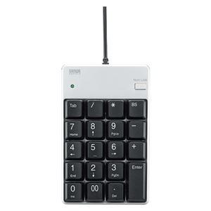 サンワサプライ USB2.0ハブ付テンキー シルバー(簡易パッケージ) NT-17UH2PKN