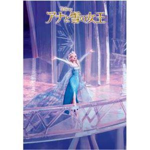 テンヨー DSG-500-459 Let It Go(アナと雪の女王) 【ジグソーパズル】 h01