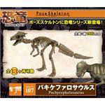 リーメント 107 バキケファロサウルス