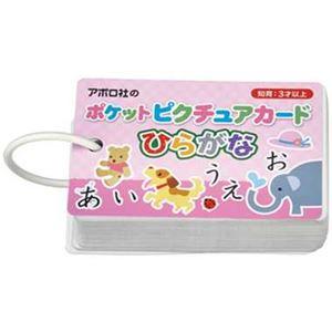 アポロ社 08-302 ポケットピクチュアカード ひらがな 【知育玩具】