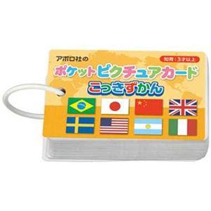 アポロ社 08-303 ポケットピクチュアカード こっきずかん 【知育玩具】