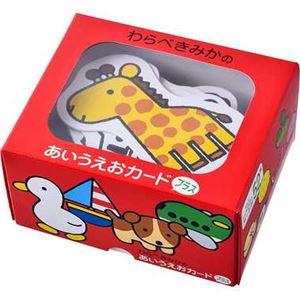 幻冬舎 497910 わらべきみかのあいうえおカード プラス 【知育玩具】