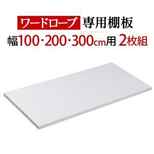 アルミフレーム大型スライドドア 〔サローネ〕 ワードローブ 専用棚板 本体幅100/200/300cm用 2枚組
