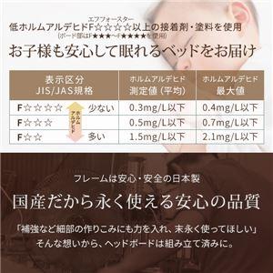 日本製 フロアベッド 照明付き 連結ベッド  ダブル (SGマーク国産ボンネルコイルマットレス付き) 『NOIE』ノイエ ホワイト 白