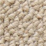 サンゲツカーペット サンノート 色番EO-1 サイズ 200cm×240cm 【防ダニ】 【日本製】