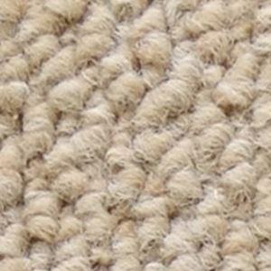 サンゲツカーペット サンノート 色番EO-1 サイズ 200cm×300cm 【防ダニ】 【日本製】