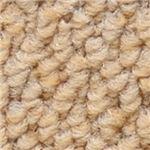 サンゲツカーペット サンノート 色番EO-2 サイズ 200cm×300cm 【防ダニ】 【日本製】