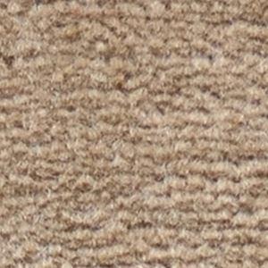 サンゲツカーペット サンフルーティ 色番FH-3 サイズ 200cm×300cm 【防ダニ】 【日本製】の詳細を見る