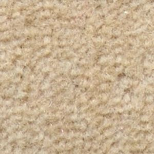 サンゲツカーペット サンスウィート 色番SE-2 サイズ 200cm×200cm 【防ダニ】 【日本製】の詳細を見る