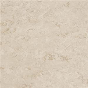 東リビニル床タイルフェイソールプルスサイズ45cm×45cm色FPT206214枚セット【日本製】