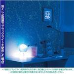 光る壁紙(蓄光) のりなしタイプ サンゲツ FE-4039 92cm巾 30m巻【防カビ】【日本製】