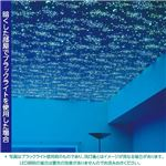 光る壁紙(蓄光) のりなしタイプ サンゲツ FE-4041 93cm巾 30m巻【防カビ】【日本製】