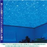 光る壁紙(蓄光) のりなしタイプ サンゲツ FE-4042 92cm巾 30m巻【防カビ】【日本製】