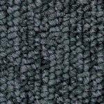 環境提案タイルカーペットサンゲツ NT-250eco ベーシック サイズ:50cm×50cm 12枚セット 色番:NT-2555【防炎】【日本製】