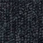 環境提案タイルカーペットサンゲツ NT-250eco ベーシック サイズ:50cm×50cm 12枚セット 色番:NT-2556【防炎】【日本製】