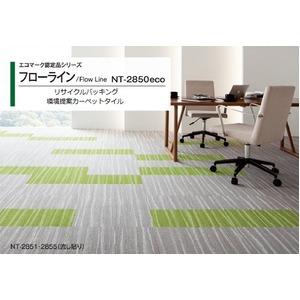 エコマーク認定品 環境提案タイルカーペットサンゲツ NT-2850eco フローラインサイズ 50cm×50cm 8枚セット色番 NT-2851の詳細を見る