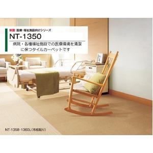 制菌 医療・福祉施設向けタイルカーペットサンゲツ NT-1350 サイズ 50cm×50cm 8枚セット色番 NT-1351の詳細を見る