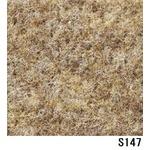 パンチカーペット サンゲツSペットECO 色番S-147 182cm巾×2m