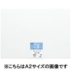 (業務用3セット) 桜井 スターパックトレス ツヤ消 A160 60G 100枚