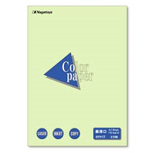 (業務用20セット)Nagatoya カラーペーパー/コピー用紙 【B5/最厚口 25枚】 両面印刷対応 若草