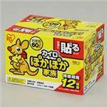 (業務用20セット) アイリスオーヤマ ぽかぽか家族貼るレギュラー60個入PKN-60HR ×20セット