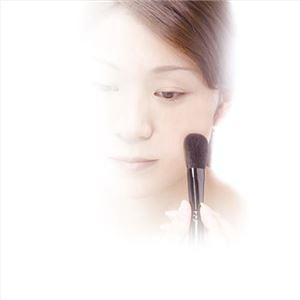 広島筆メイクブラシセット#40 137-03M