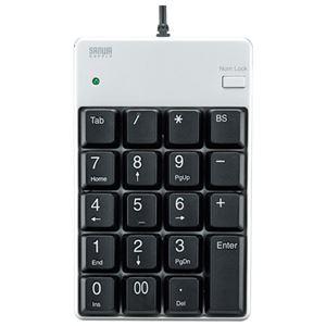 サンワサプライ USBテンキーNT-17UPKN