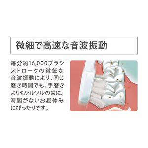 音波振動ハブラシ ポケットドルツPK204-03B