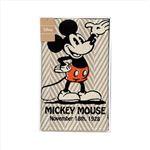 ディズニー玄関マット142-06A の画像