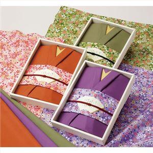 彩美きもの姿 紫 173-01A